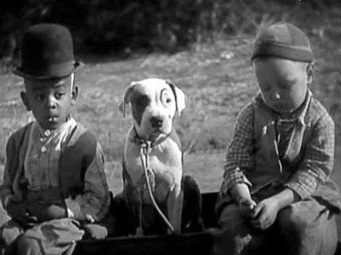 Matthew Beard, Pete the Pup și Bobby Hutchins în Școala noastră de comedii