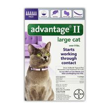 Bayer avantaj ii tratament de purice de control pentru pisici revizuire