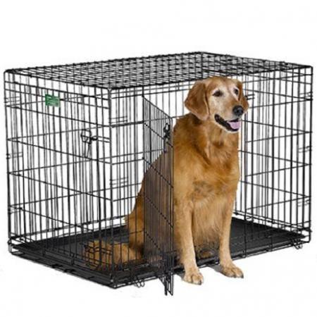 MidWest iCrate Plăcuță de metal pentru câini