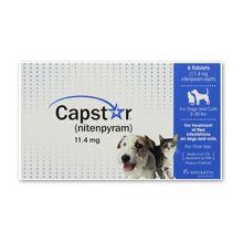 Capstar tratamentul de purice pentru câini și pisici revizuire