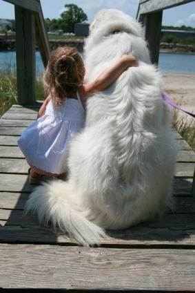Câini de câine bune pentru copii