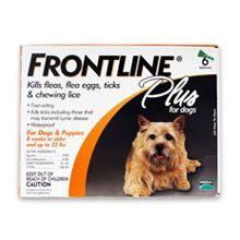 Merial Frontline Plus Flea și controlul ciliei pentru câini