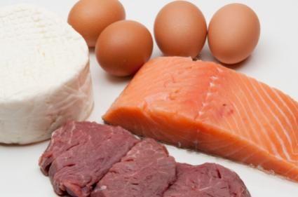 Surse de proteine pentru câini