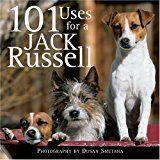 101 Utilizează un Jack Russell